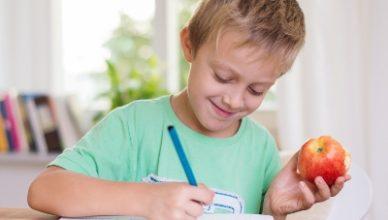Happy young boy doing schoolwork